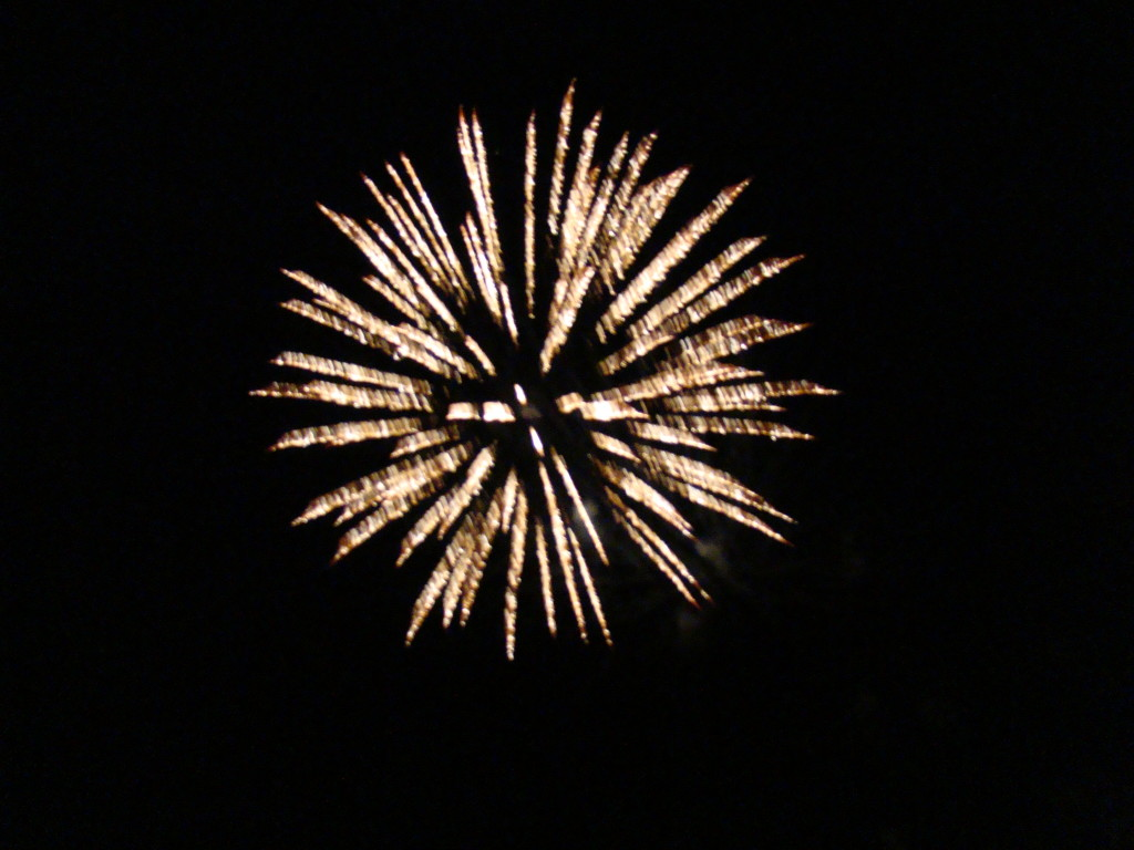 4th of July 2010 170