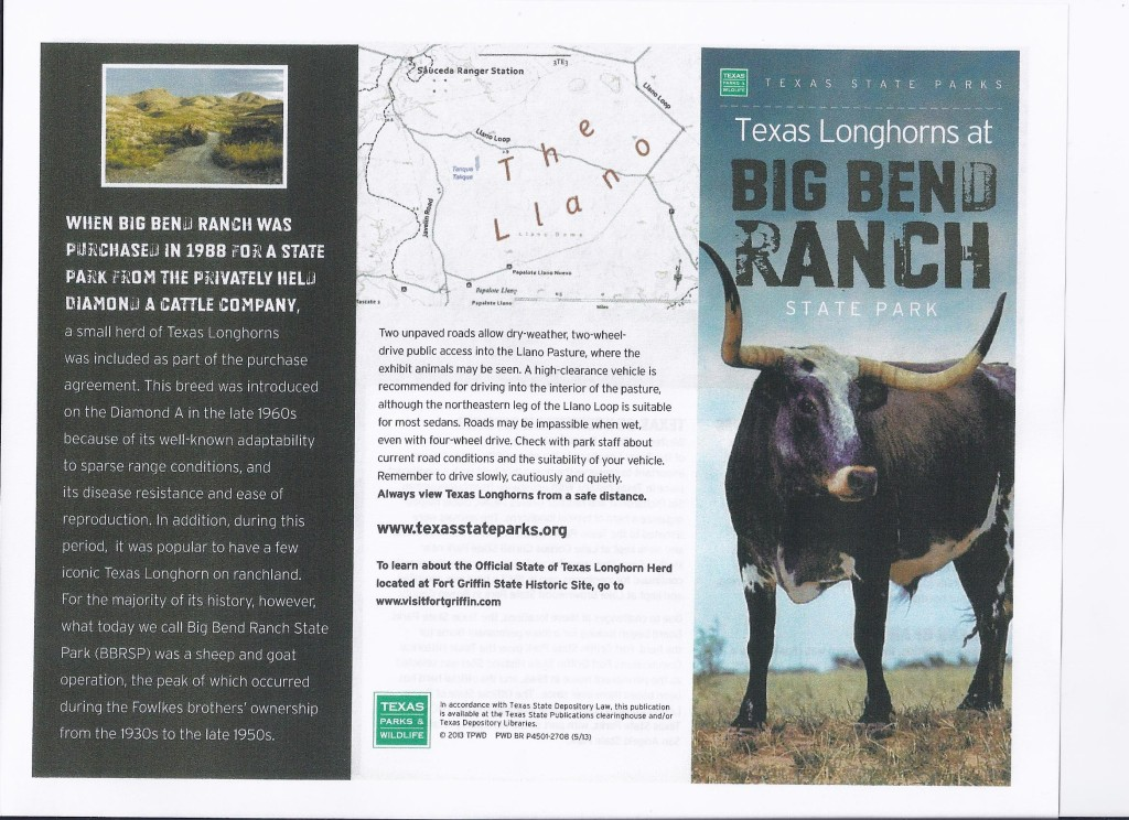 BB Ranch LongHorn Brochure